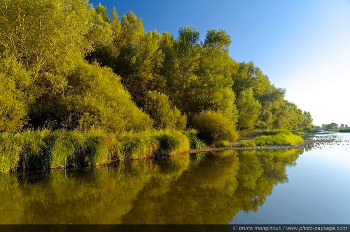 balade bord de Loire